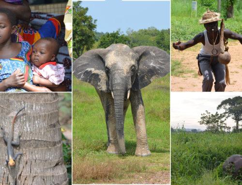 Projekt- und Tourismus Reise nach Togo